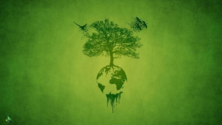 Que es la Sustentabilidad?