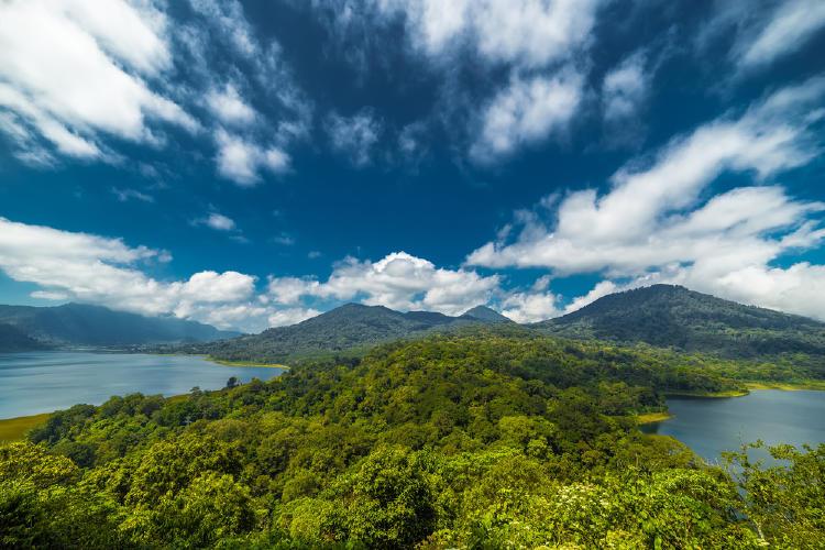 Bosque Indonesia con cielo azul y nubes blancas