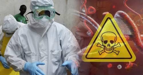 ¿La epidemia del siglo XXI? Detectan brote de esta letal enfermedad y los exp..