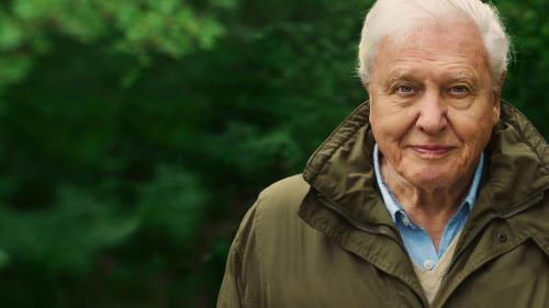 David Attenborough y su visión sobre el futuro del planeta Tierra