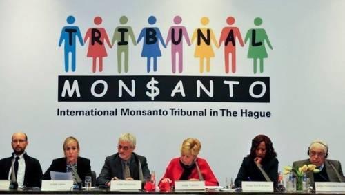 Monsanto llegó al Tribunal Internacional y ésto es de lo que se lo acusa