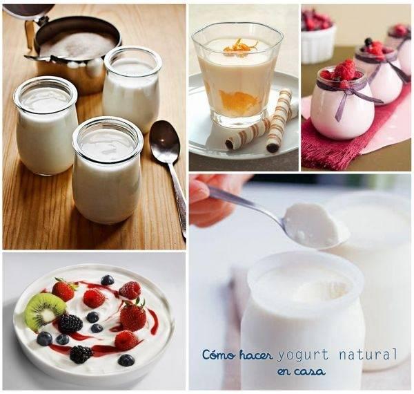 Cómo hacer yogurt natural en casa