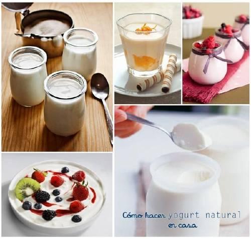 Cómo Hacer Yogurt Natural En Casa Bioguia