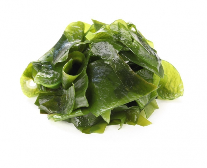 alga comestible