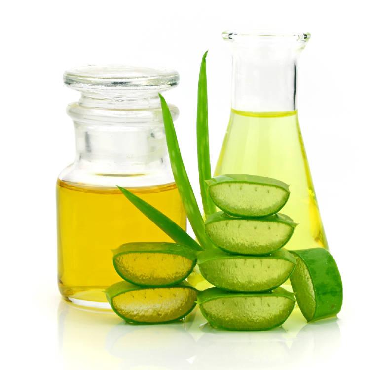 cortes de aloe vera y envases con aceite
