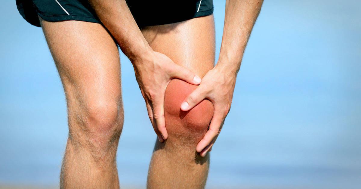 4 plantas útiles para aliviar los dolores musculares