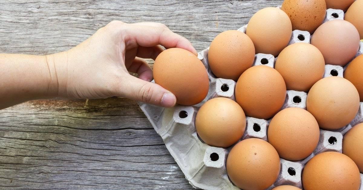"""¿Cómo saber si los huevos """"caducados"""" siguen siendo buenos para comer?"""