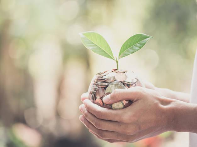4 charlas TED sobre el rol de la empresas ante la crisis climática