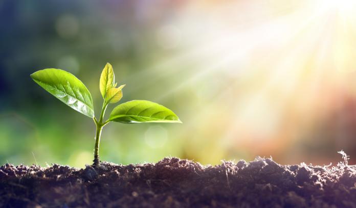 Biodegradación ¿En qué consiste y como beneficia al ambiente?
