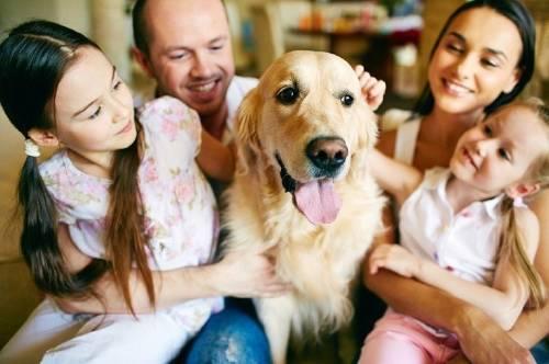 ¿Qué tipo de perro será una mejor elección para tu familia y para ti?