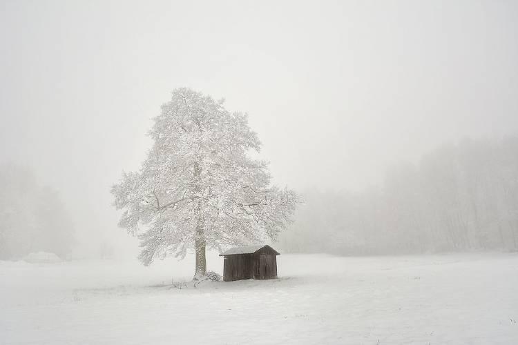 \'Silence\' por @wunderbilder (Alemania)