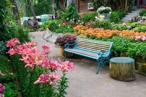 Jardines terapéuticos: espacios verdes para lograr el bienestar