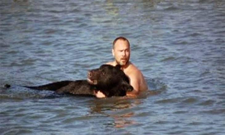 Mira cómo este hombre arriesgo la vida por un oso: ¿Qué hubieras hecho tú?