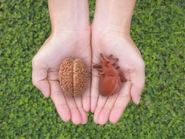 Una persona sostiene un cerebro en una mano y un corazón en la otra