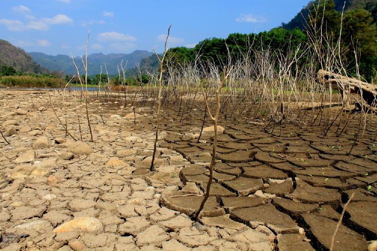 Afirman que el cambio climático podría obligar a 216 millones de personas a migrar dentro de sus países