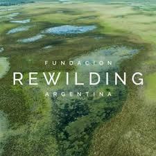 rewilding.jpeg