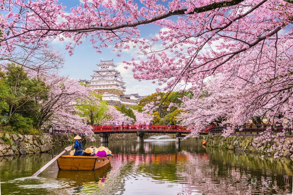 Viajar en Japón costaría la mitad después de la pandemia