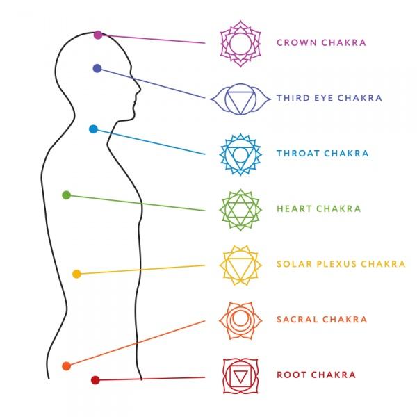 Un dibujo que muestra la ubicación de los chakras