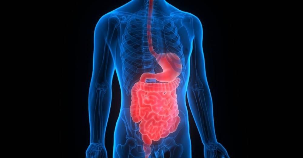 Efectivas soluciones para los problemas digestivos más comunes