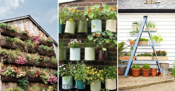 12 ideas para montar jardines verticales for Bioguia jardines