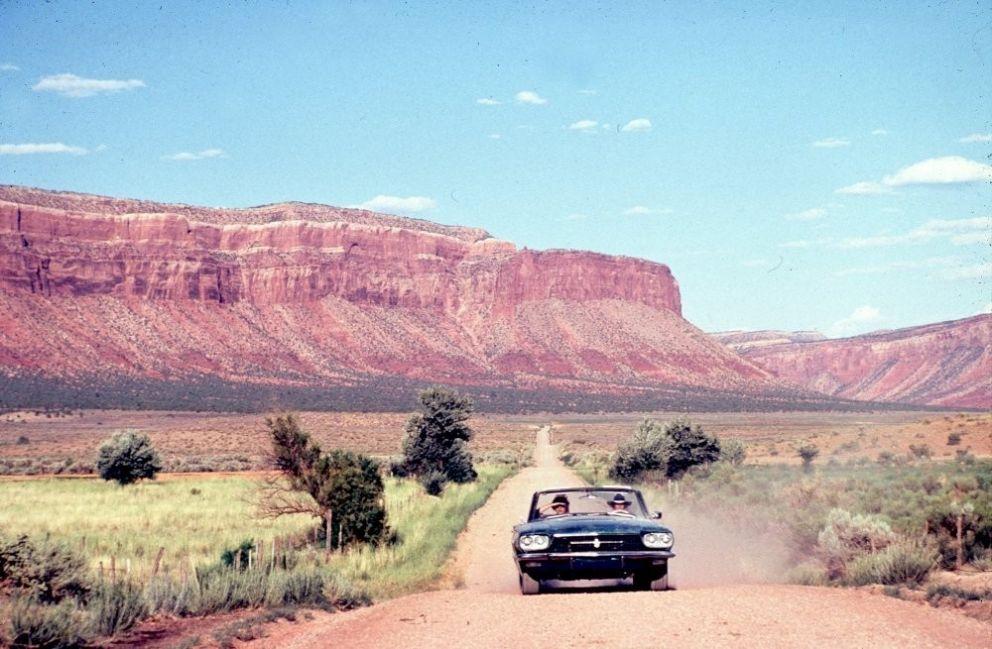 tendencias viaje auto