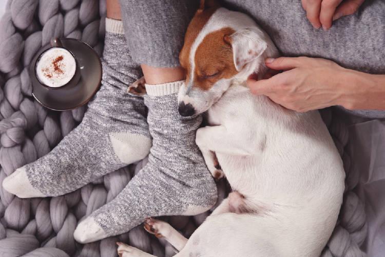 Una persona recostada con su perro y una taza de café