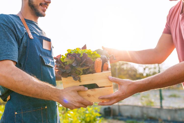 comprar verduras feria
