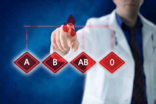 Blood type shutterstock_521326471