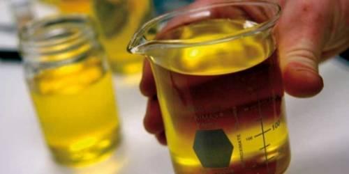 Este genio usa aceite de cocina para producir energía limpia en los festivale..