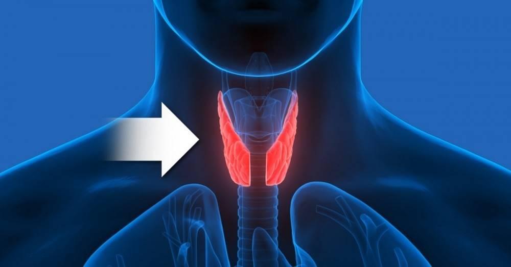 10 señales tempranas de que tienes problemas en la glándula tiroidea