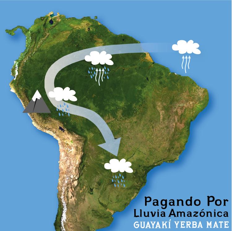 LLUVIA AMAZONIA