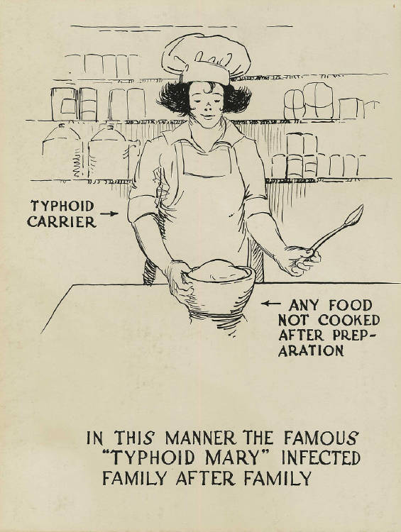 1024px-Typhoid_carrier_polluting_food_-_a_poster