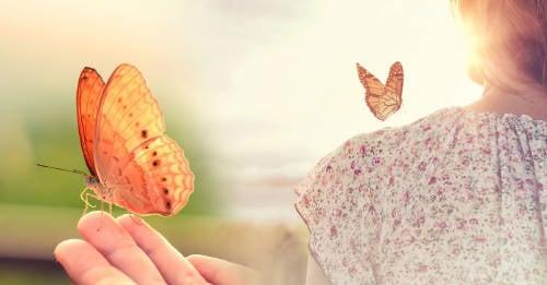 Cuál es el significado espiritual de las mariposas y su simbología por colores