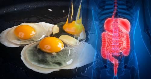 Esta es la cantidad de huevos que se considera saludable comer por semana