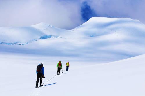 Ya eligieron a los 5 voluntarios que pasarán un año sabático en la Antártida