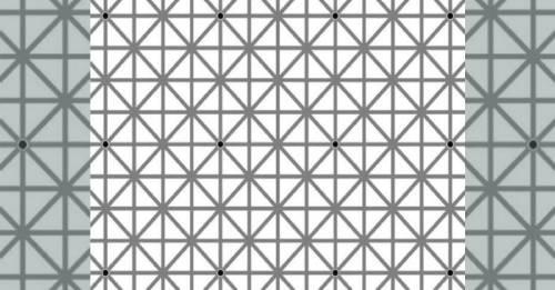 Desafío visual: ¿Cuántos puntos negros ves? Tus ojos pueden mentir