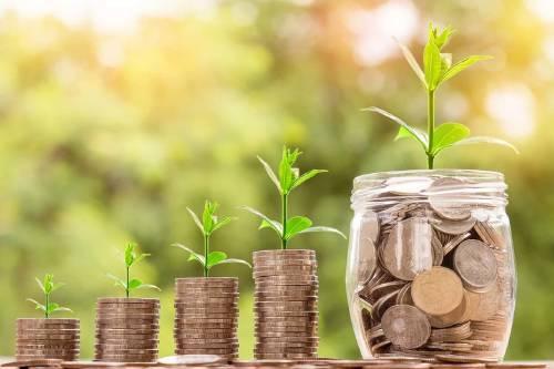 8 nuevos negocios para tener un futuro regenerativo