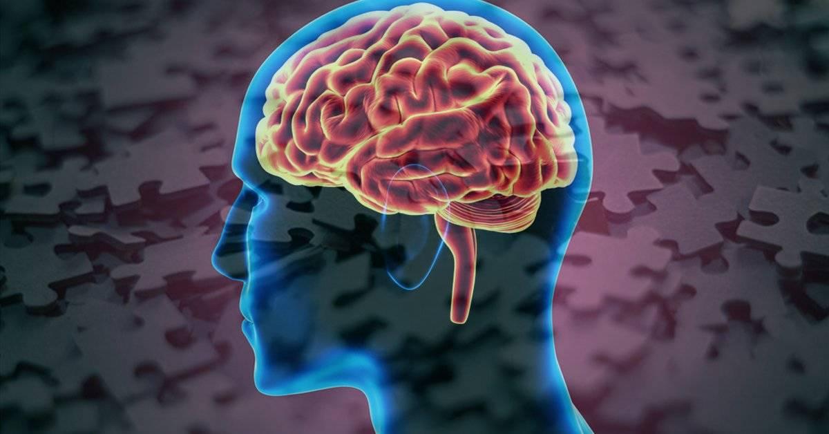 4 razones por las que tienes mala memoria y como revertirlo