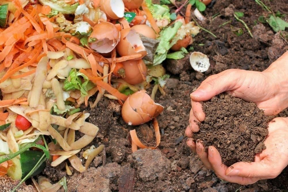 Cómo elaborar compost en casa paso a paso