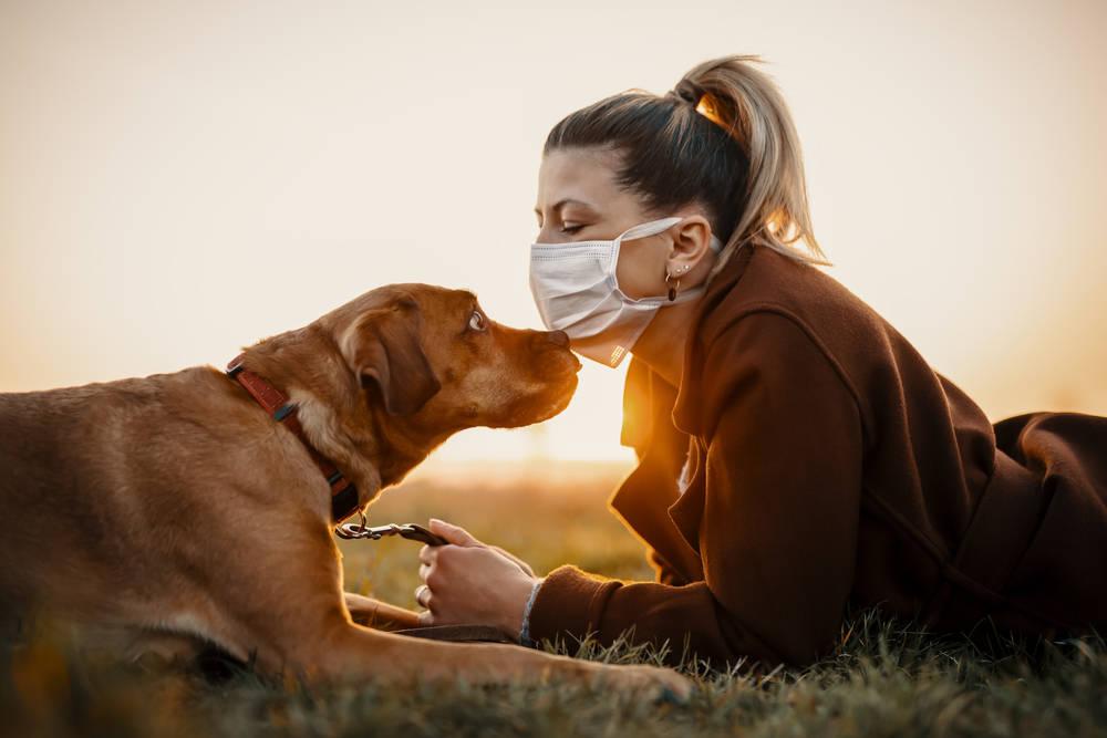 Mascotas y coronavirus: todo lo que debes saber al respecto