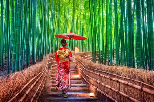 5 disciplinas japonesas para alcanzar la plenitud
