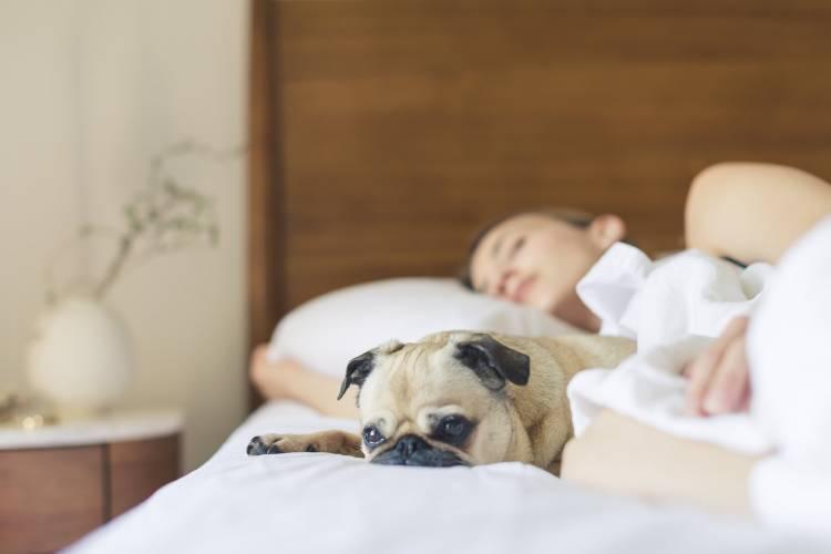 Una mujer durmiendo con su perro
