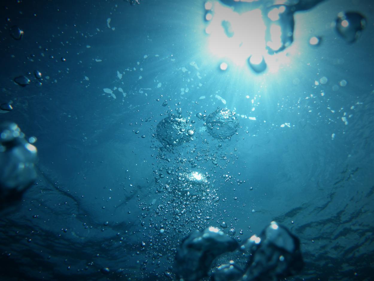¿Sabías que el 70% del oxígeno que respiramos proviene de los océanos?