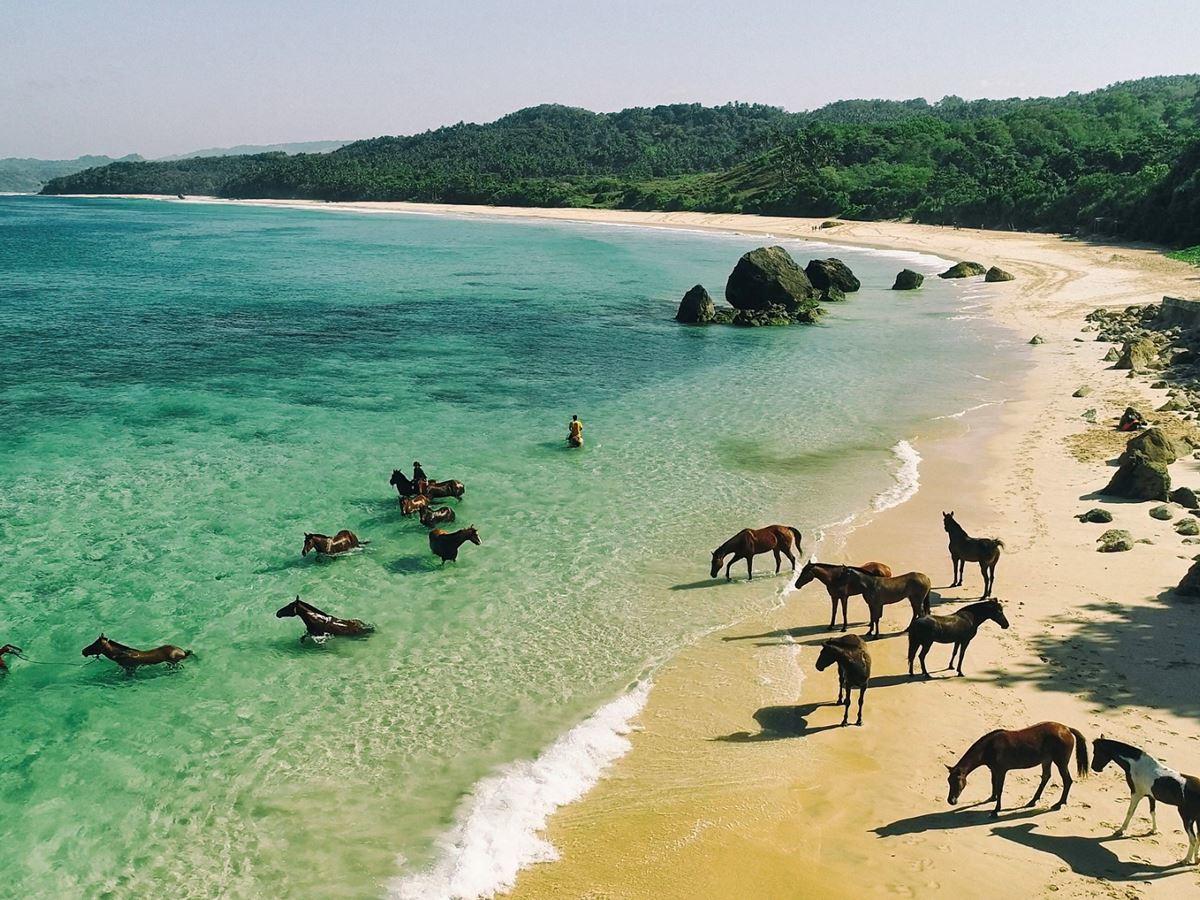 Al trote y al galope en la remota isla indonesia de Sumba