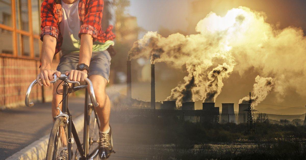 Bioguía - Inspirando el cambio