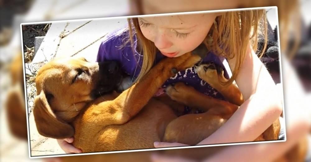 La dulce manera en que esta niña acuna a su perrito rescatado te hará llorar..