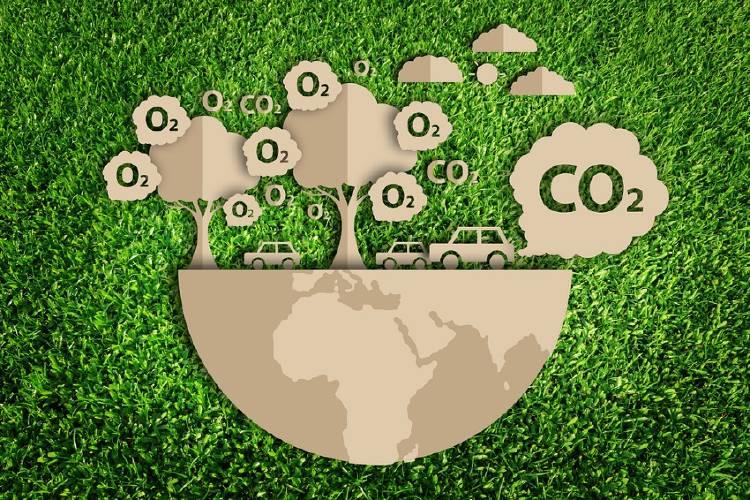 arboles carbono emisiones