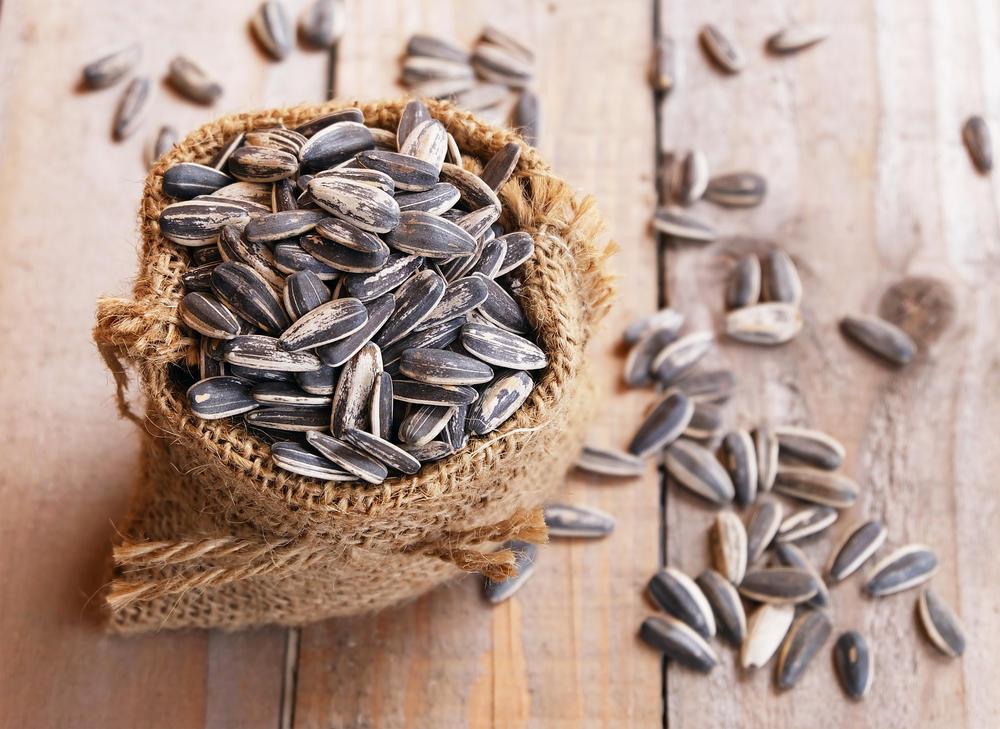 Semillas: ¿por qué consumirlas y cómo incorporarlas a tus comidas?