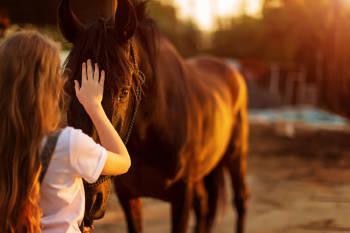Una chica acaricia un caballo