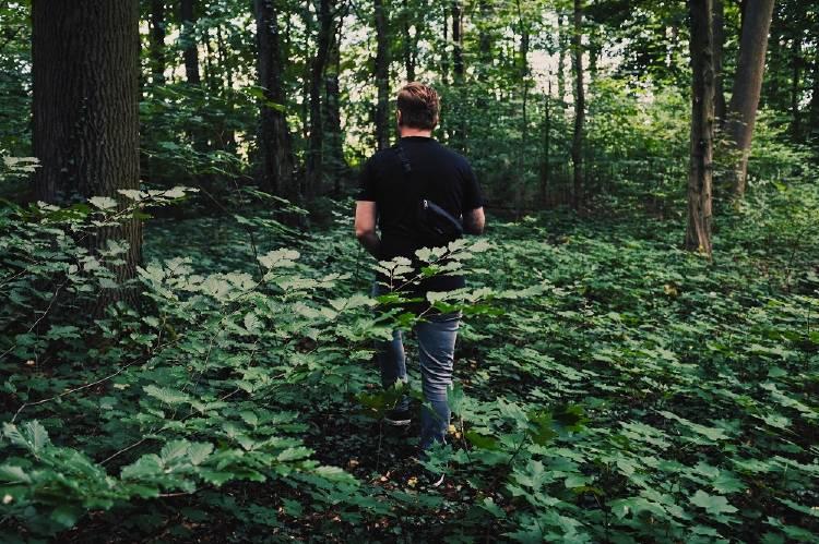 En Escocia recetan caminar por el bosque